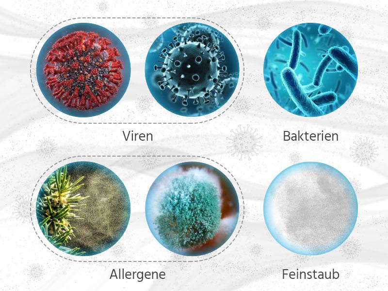 Mikroskop-Bilder von Viren. Bakterien, Allergenen und Feinstaub